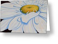 Oil Painting - Daisy Greeting Card
