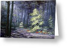 Oil Painting - Forest Light Greeting Card