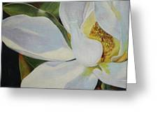 Oil Painting - Sydney's Magnolia Greeting Card