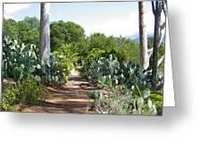 Ojai Desert Garden Greeting Card