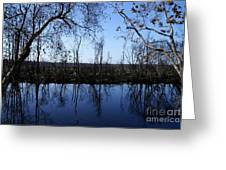 Okefenokee Reflection Greeting Card