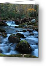 Okonoluftee Mountain Stream Greeting Card