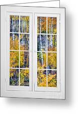 Old 16 Pane White Window Colorful Fall Aspen View  Greeting Card
