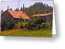 Old And Abandoned In The Country Greeting Card