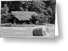 Barn In Kentucky No 84 Greeting Card