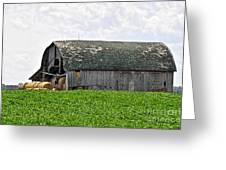 Old Barn And Round Bales Greeting Card
