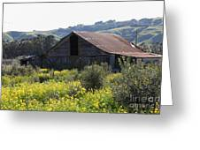 Old Barn In Sonoma California 5d22232 Greeting Card