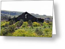 Old Barn In Sonoma California 5d22235 Greeting Card by Wingsdomain Art and Photography