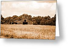 Old Barn Staying Silent  Greeting Card