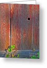 Old Barn Wood Greeting Card