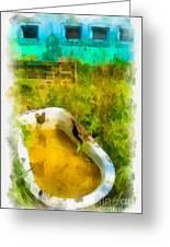Old Bathtub Near Painted Barn Greeting Card by Amy Cicconi
