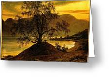 Old Birch Tree At The Sognefjord Greeting Card