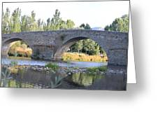 Old Bridge Over Tormes River Greeting Card