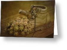 Old Brown Shoe Greeting Card