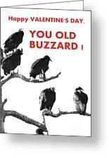 Old Buzzard Valentine Greeting Card