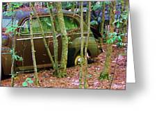 Old Car In The Woods Greeting Card