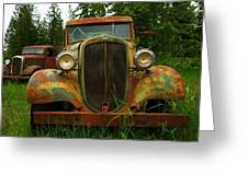 Old Cars Left To Decorate The Weeds Greeting Card