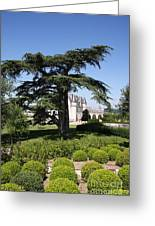 Old Cedar At Chateau Amboise Greeting Card