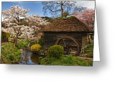 Old Cherry Blossom Water Mill Greeting Card