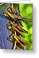 Old Clothes Pins II - Digital Paint Greeting Card