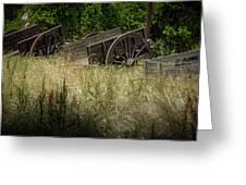 Old Cotton Bale Wagons Greeting Card by Allen Biedrzycki