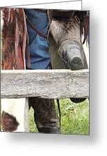 Old Cowboy Greeting Card