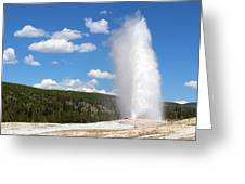 Old Faithful Geyser In Yellowstone National Park  Greeting Card