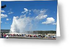 Old Faithful. With Thanks To Lee Greeting Card