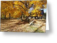 Old Farmroad With Autumn Colors Greeting Card