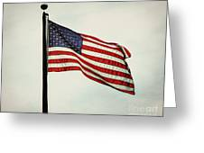 Old Glory In The Wind Greeting Card