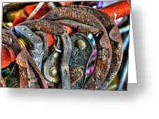 Old Horse Shoes Greeting Card