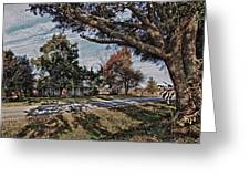 Old House And The Trees Greeting Card