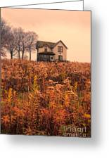 Old House In Weeds Greeting Card