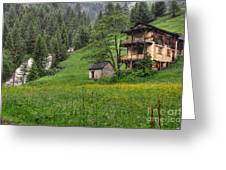 Old House On The Green Field Greeting Card