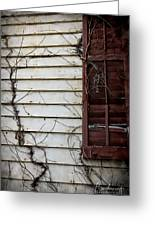 Old House Red Shutter 4 Greeting Card
