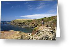 Old Lizard Head And Polpeor Cove Greeting Card