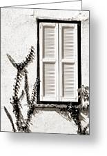 Old Painted Shutter 2 Greeting Card
