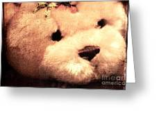 Old Photo Bear Greeting Card