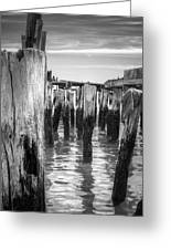 Old Pier In Provincetown Cape Cod Greeting Card
