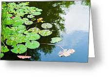 Old Pond - Featured 3 Greeting Card