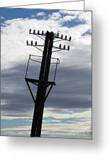 Old Power Pole Greeting Card