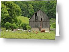 Old Quebec Barn Greeting Card