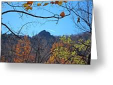 Old Rag Hiking Trail - 121212 Greeting Card
