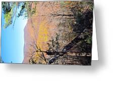 Old Rag Hiking Trail - 121215 Greeting Card
