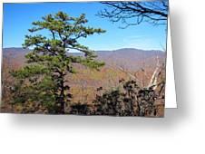 Old Rag Hiking Trail - 121221 Greeting Card