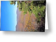 Old Rag Hiking Trail - 121224 Greeting Card