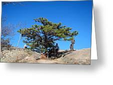 Old Rag Hiking Trail - 121238 Greeting Card