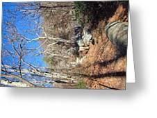 Old Rag Hiking Trail - 121246 Greeting Card