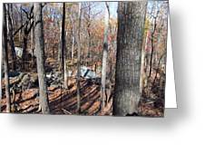 Old Rag Hiking Trail - 12126 Greeting Card