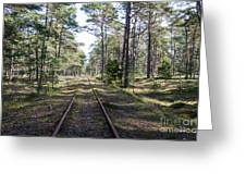 Old Railroad Tracks Greeting Card